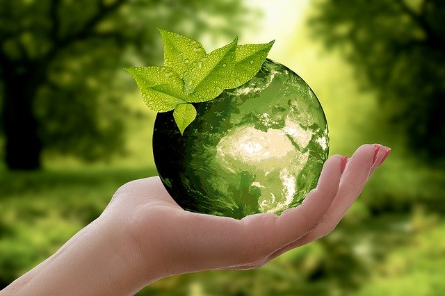 IMPLEMENTING SUSTAINABILITY IN OUR DAY TO DAY LIFE