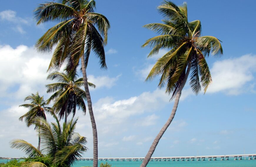 2021 Florida Keys Travel Guide For First-Time Visitors